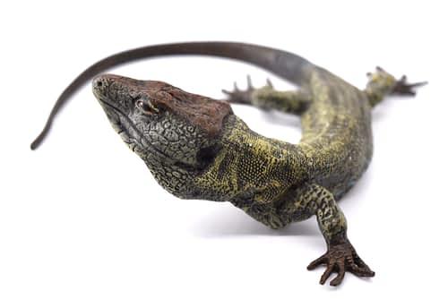 Franze Bergman bronze lizard