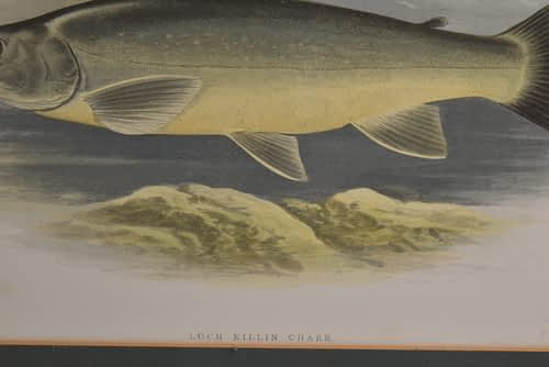 Print of Lock Killin Charr by Rev W Houghton